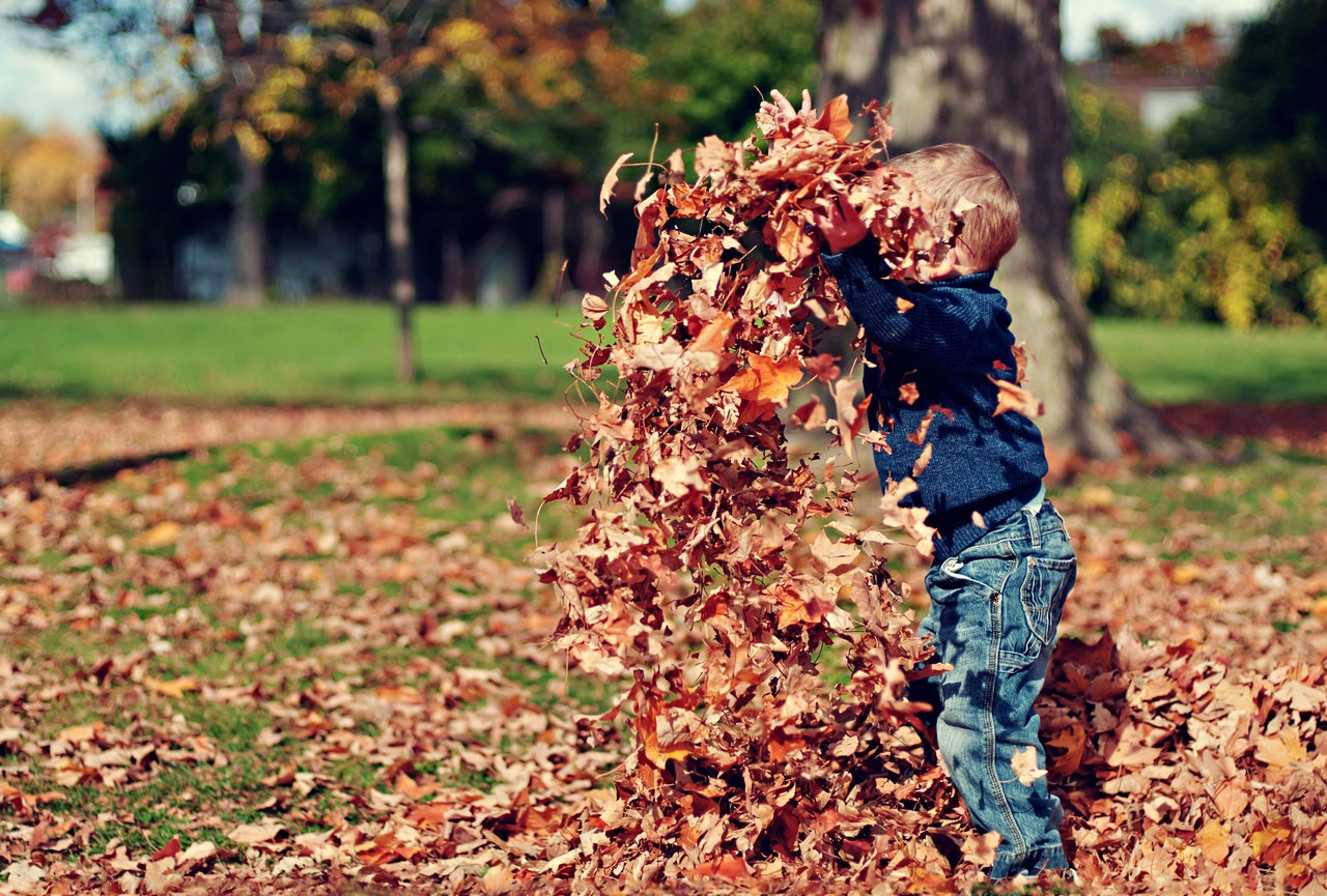 boy-jumping-in-leaves.jpg